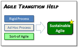 Agile Adoption